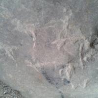 Quartier de Sainte-Barbe : pétroglyphe, ou ''pierre marquée''.